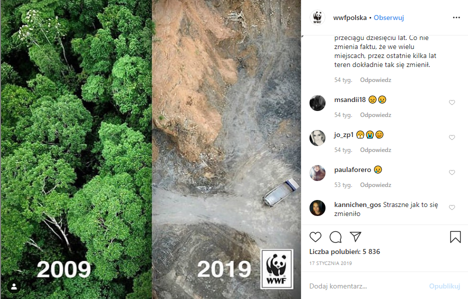 WWF picture - forest now and 10 years ago