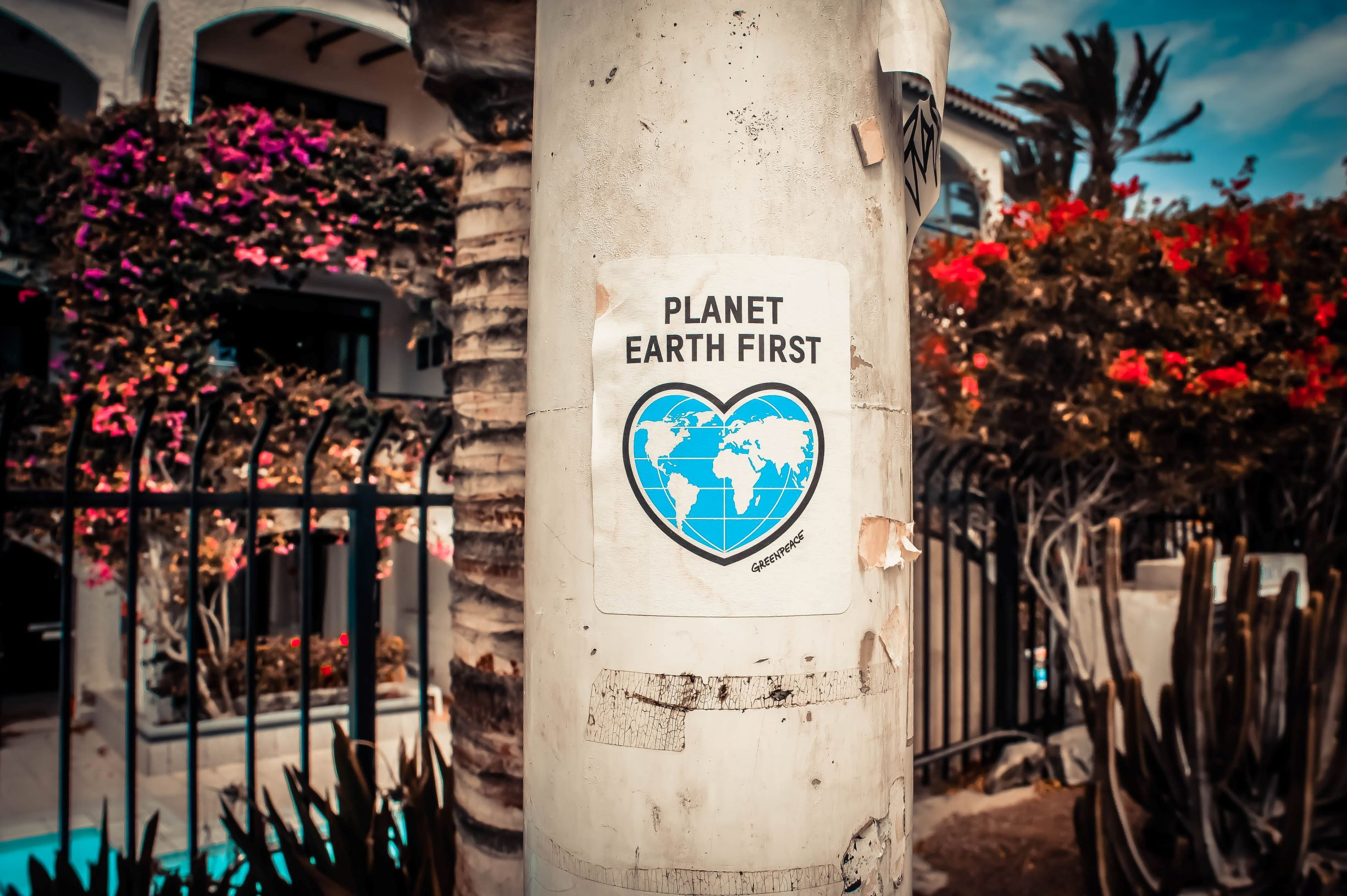 a banner with a caption: planet earth first